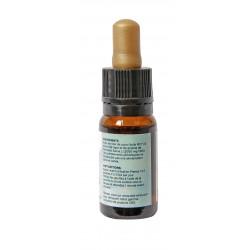 Vial of 10 ML of 20% full spectrum CBD oil   2000 Mg Cannabidiol CBD INNOV - 3