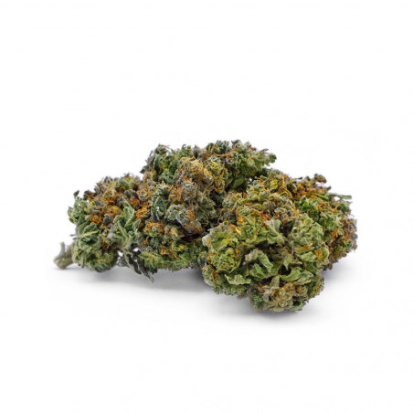 Candy Kush Indoor taste earthy Cannabidiol - 1
