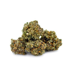 Strawberry Diesel Cannabidiol - 1