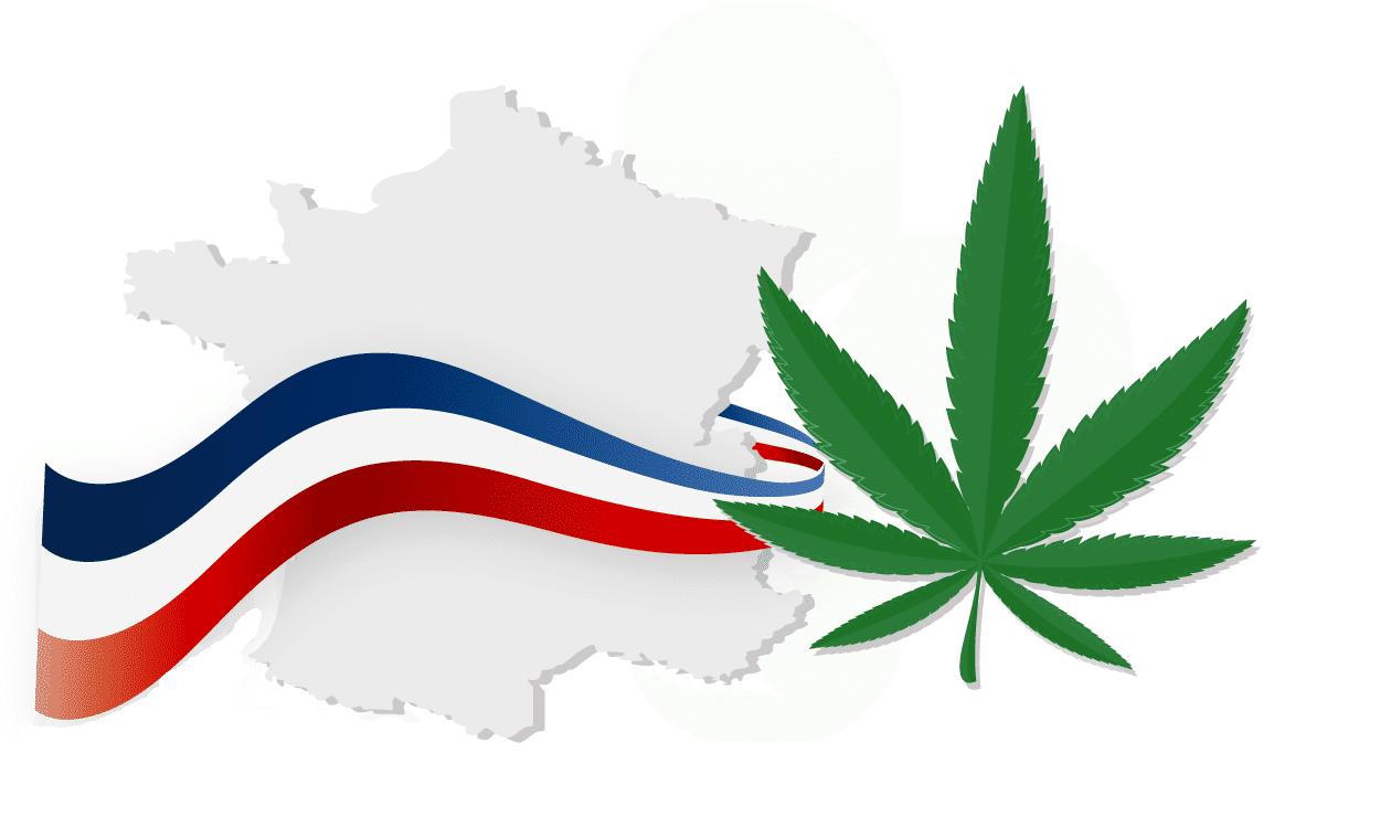 Est-ce que le CBD est legal en France