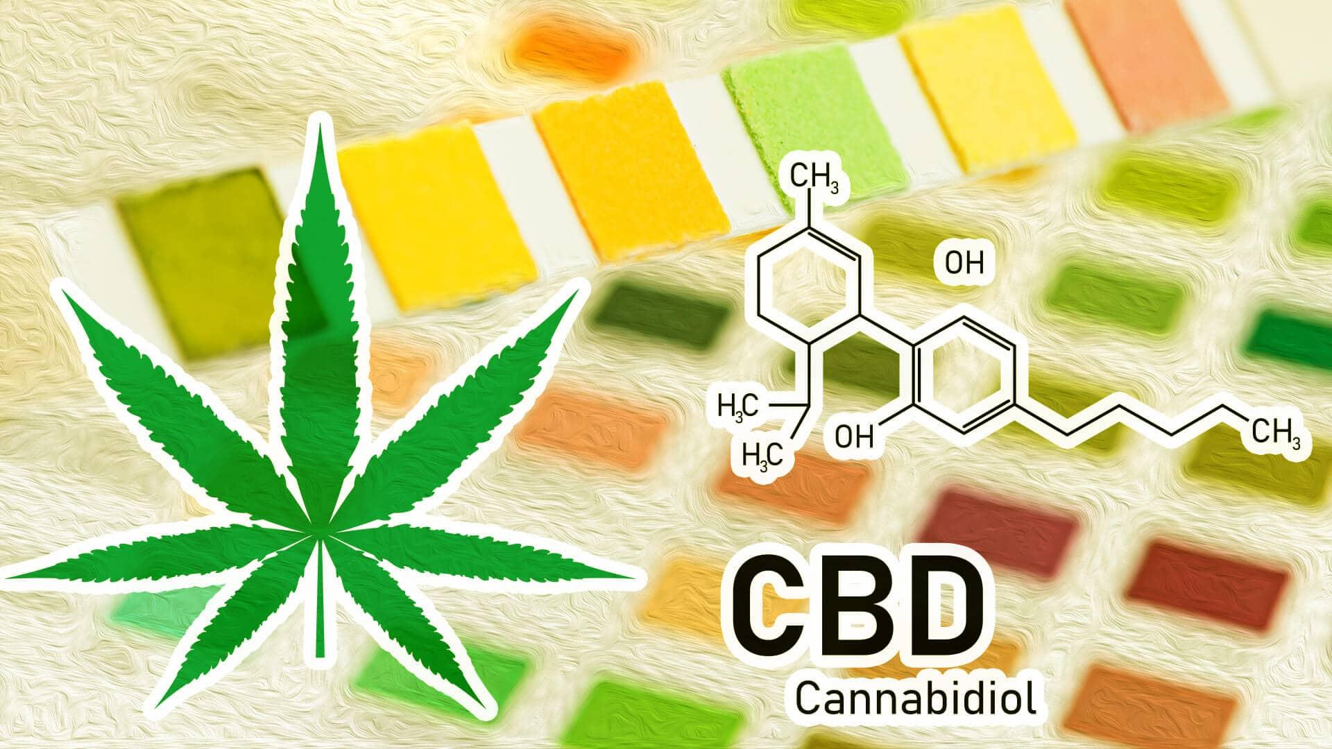 Est-ce que le CBD est une drogue