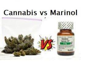 Cannabis vs Marinol